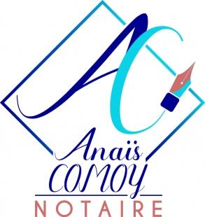 OLAQUAGE-Logo